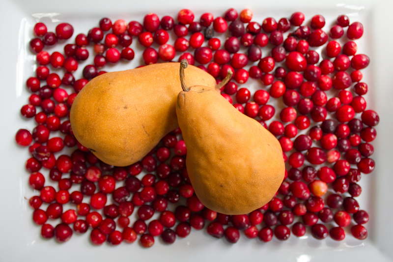 Cranberry Ginger and Pear Sauce « pitchfork diaries